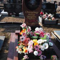 Одинарні пам'ятникі№31